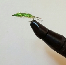 Green Shrimp Fly