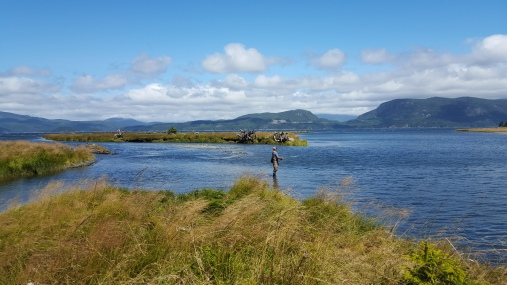 Fishing the Estuary