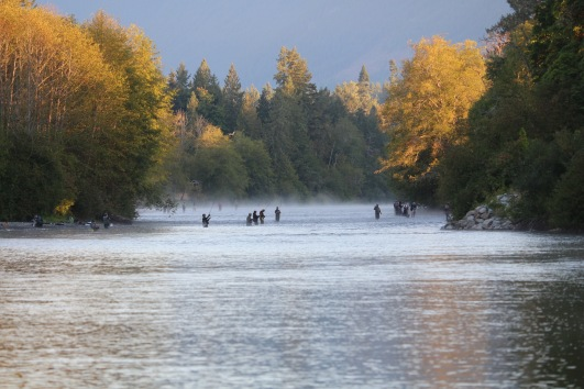 crowded fall rivers