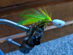 A yellow & green popper fly, effective for top-water fishing sea-run cutts